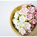 30 Mixed pink & white flowe..