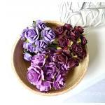 Flower purple Mulberry mixe..