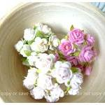 Mulberry mini Rose Buds pap..